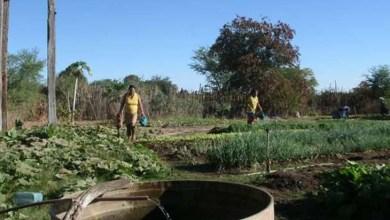 Photo of Bahia tem dois decretos de interesse social com retomada da reforma agrária