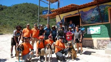 Photo of Chapada: Cães farejadores auxiliam na nova fase de buscas ao turista espanhol desaparecido