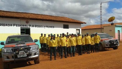Photo of Brigada do assentamento Rosely Nunes combate incêndios no Parque Nacional da Chapada Diamantina