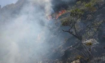 Fogo em Rio de Contas - FOTO Secretaria de Meio Ambiente - Divulgação 7
