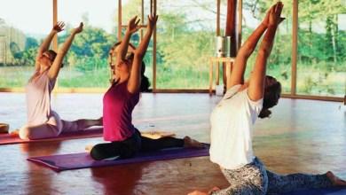 Photo of Ministério da Saúde inclui ayurveda, quiropraxia, ioga e shantala entre as práticas no SUS