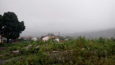Photo of #Bahia: Diretor do Inema afirma que, apesar de alerta emitido, as pessoas devem ficar tranquilas