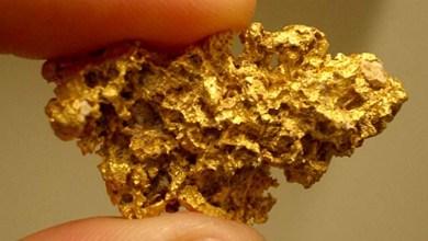 Photo of Chapada: Ouro pode mudar economia da região de Iramaia; campo aurífero é descoberto