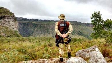 Photo of Chapada: Vinte e três municípios da região completam mais de 100 dias sem registros de crimes violentos