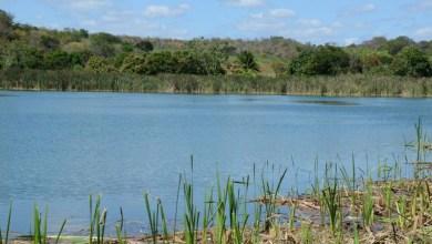 Photo of Chapada: Agricultores da bacia do Rio Utinga estão preocupados com vazão e dizem que pode faltar água