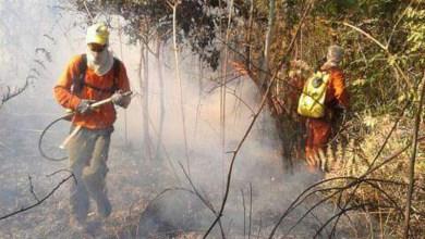 Photo of Balanço de incêndios da última temporada no Parque Nacional da Chapada Diamantina é divulgado pelo ICMBio