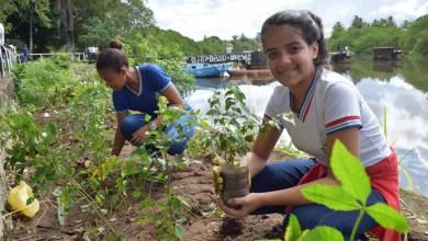 Photo of Escolas têm até 14 de abril para a etapa preparatória da Conferência Infantojuvenil pelo Meio Ambiente