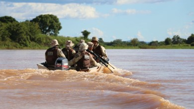 Photo of #Bahia: Cipe-Semiárido completa 547 dias de operações no Rio São Francisco