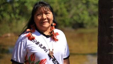 Photo of Indígena brasileira eleita deputada federal vence prêmio da ONU; saiba mais aqui