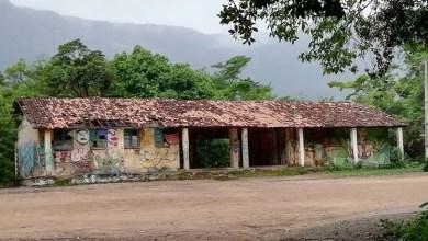 Photo of Chapada: Mobilização de comunidade do Vale do Capão pretende construir escola de ensino médio