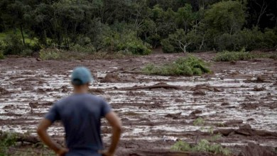 Photo of #Brasil: Justiça aceita denúncia contra 16 pessoas pela tragédia em Brumadinho que matou 270 pessoas