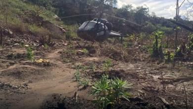 Photo of #Bahia 23 mil pés de maconha são localizados e erradicados durante operação da PF no norte do estado