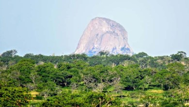 Photo of Chapada: Lançamento da quarta edição do livro 'Pedra que Brilha' será nesta sexta em Itaberaba
