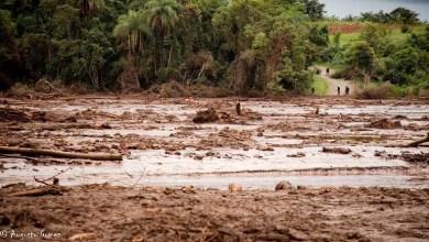 Photo of #Brasil: Nota do Ibama e IEF desmente informação de que o Rio São Francisco foi atingido por resíduos de Brumadinho