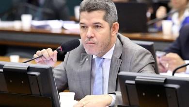 Photo of #Brasil: Líder do PSL na Câmara diz que crianças devem trabalhar a partir dos 12 anos