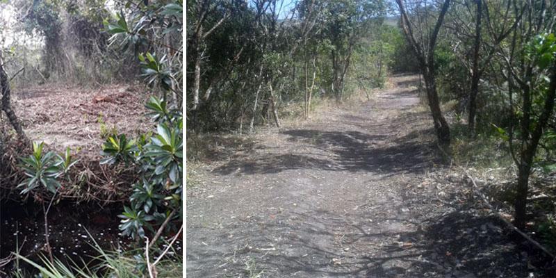 Chapada: Parque na área do Vale do Capão segue com ocupação irregular mesmo depois de autuações