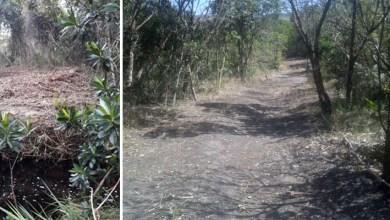 Photo of Chapada: Parque na área do Vale do Capão segue com ocupação irregular mesmo depois de autuações