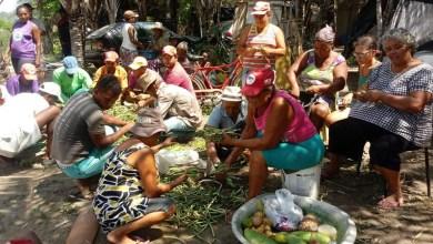 Photo of Chapada: MST reocupa área improdutiva na zona rural do município de Itaberaba após sofrer ataques