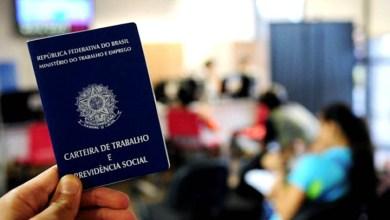 Photo of Brasil registra o quinto mês consecutivo com saldo positivo de emprego; área de serviços lidera os números