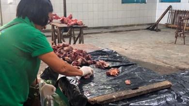 Photo of Chapada: Mais de 600 quilos de carne de abate clandestino são apreendidos em Jacobina; cinco pessoas são presas