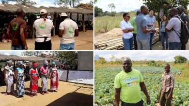 Photo of Bahia e Moçambique trocam experiências sobre desenvolvimento rural