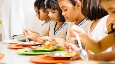 Photo of Municípios da Chapada Diamantina recebem repasses para ações em alimentação e nutrição