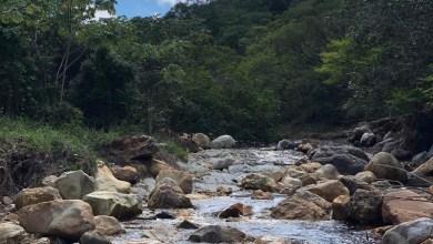 Photo of Chapada: Jacobina é acionado pelo MP por degradação do Parque Natural Municipal de Macaqueiras