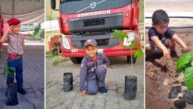 Photo of Chapada: Crianças de Itaberaba interagem com bombeiros e plantam mudas em ato simbólico no Dia da Árvore
