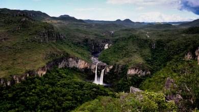 Photo of #Brasil: Valor de ingressos nos parques nacionais aumenta em novembro; saiba mais