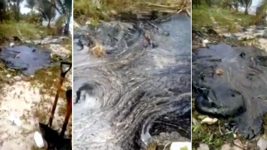 Photo of #Tragédia: Grande quantidade de óleo bruto é encontrada na praia baiana de Pratigi