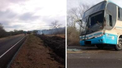 Photo of Chapada: Ônibus da Novo Horizonte se envolve em acidente na região de Oliveira dos Brejinhos