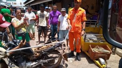 Photo of Cobra com mais de um metro estava escondida em assento de moto; dono pilotava veículo no momento