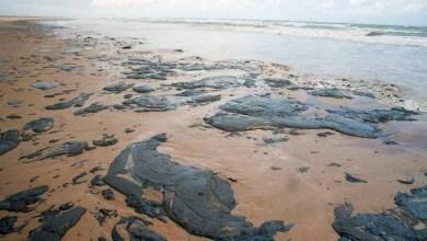 Photo of #Polêmica: Cliente da Shell nega relação com vazamento de óleo que afeta litoral nordestino