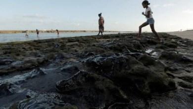 Photo of #Bahia: Órgão estadual contabiliza pescadores afetados com tragédia ambiental no litoral nordestino