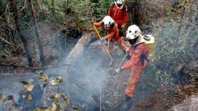 Photo of Chapada: Incêndio florestal em Rio de Contas é controlado após 13 dias de combate