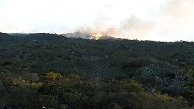 Photo of Chapada: Incêndio florestal na região da Serra das Almas tem reignição e retorna mais intenso