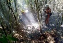 Photo of Chapada: Após controlar fogo, combatentes realizam monitoramento entre Rio de Contas e Livramento