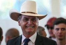 Photo of #Polêmica: Presidente Bolsonaro institui 'Dia do Rodeio' na mesma data do 'Dia Mundial dos Animais'