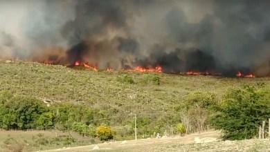 """Photo of Chapada: Novo foco de incêndio florestal é registrado entre Ibicoara e Iramaia; """"situação está bem complicada"""""""