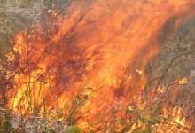 Photo of #Bahia: Bombeiros debelam focos principais de incêndio que atinge vegetação em Brejões