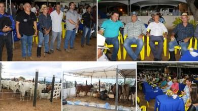 Photo of Chapada: Feira de Animais no município de Boa Vista do Tupim movimenta o agronegócio na região