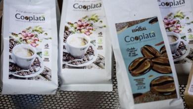 Photo of Chapada Diamantina entre as principais regiões produtoras de café; novas estratégias são geradas durante pandemia