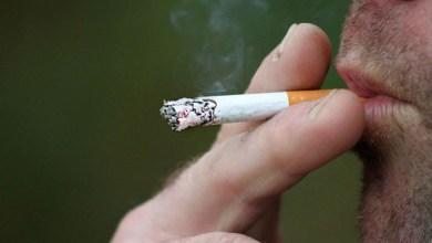 Photo of Aumento no consumo de cigarro durante a pandemia pode elevar incidência de câncer de pulmão no Brasil