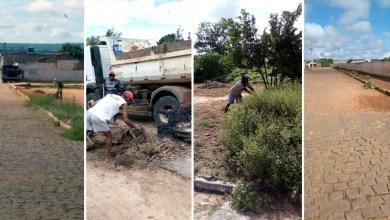 Photo of #Chapada: Prefeitura de Nova Redenção realiza operação de capina e limpeza nas vias do município