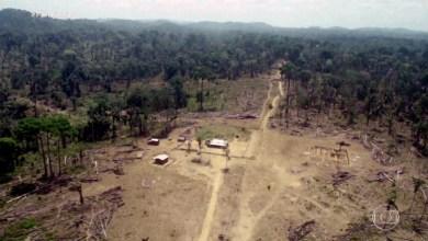 Photo of Terra indígena na Amazônia tem 94% de área declarada por fazendeiros; MP 910 é novo foco de embate entre Maia e Bolsonaro