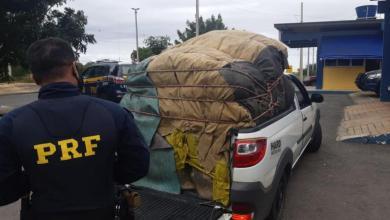 Photo of #Chapada: PRF apreende carga de carvão vegetal sem licença ambiental de empresário de Itaetê na BR-242