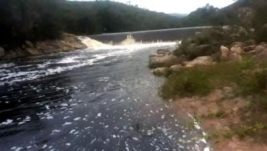 Photo of #Chapada: Corpo é encontrado boiando em barragem da comunidade de Pau Ferro no município de Palmeiras