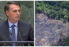 Photo of #Polêmica: Governo Bolsonaro demite responsável do INPE por monitorar o desmatamento