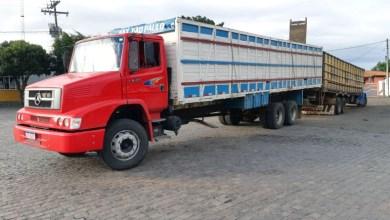 Photo of #Chapada: Gado furtado em fazendas da Bahia é recuperado por agentes da PRF na região de Lajedinho