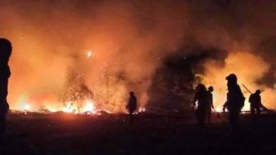 Photo of #Brasil: País registra em 2020 maior número de queimadas da década; foram mais de 222 mil focos